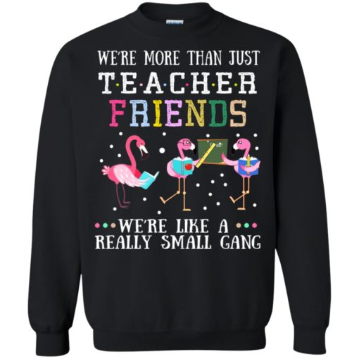 Flamingo We're more than just teacher friends we're like a really small gang